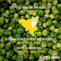 """""""Do you know Brussels? You bet"""""""